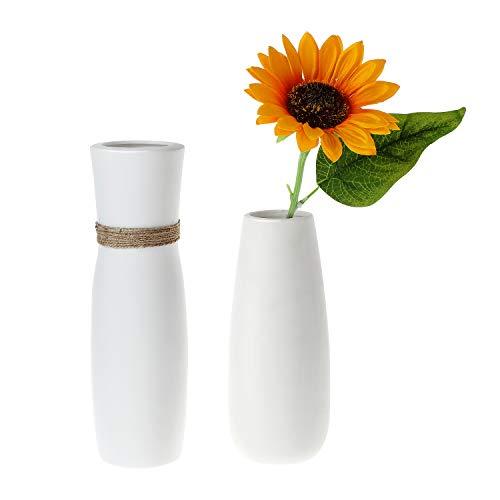 Descripción de los jarrones de cerámica de ComSaf