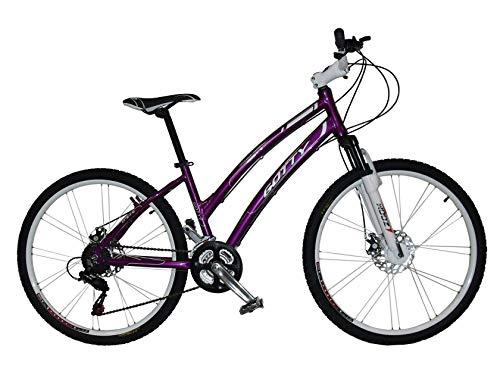 Descripción de la bicicleta de montaña Gotty MTB