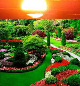 prepara tu jardin para el buen tiempo