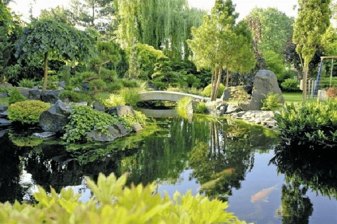 Preprara tu jardín para el buen tiempo